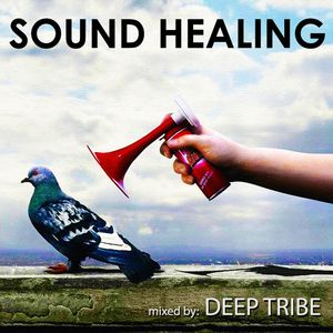 """""""Sound Healing"""" mixed By Deep Tribe (2013)"""