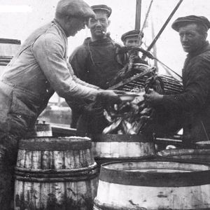 Memories of the Stronsay Herring Industry and Oot and Aboot in Stronsay