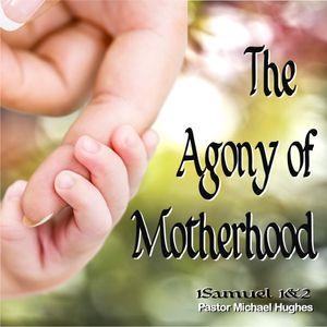 "1 Samuel 1-2 ""The Agony of Motherhood"" w/ Pastor Michael Hughes"