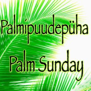 Palmipuudepüha - Palm Sunday  2017