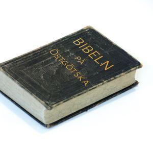 Bibeln på östgötska - del 7