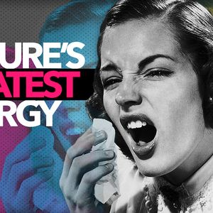 Our Culture's Greatest Allergy – Click Here