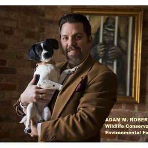 Big Blend Radio: Animal Welfare in Travel and Tourism