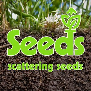 Seeds: Scattering Seeds