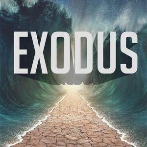Provision In The Desert - Exodus - Trevor Nashleanas - (07/16/2017)
