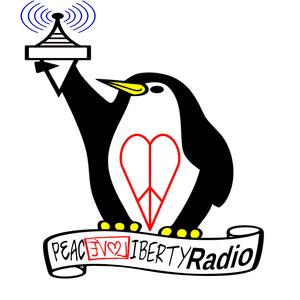 PLL Radio 459