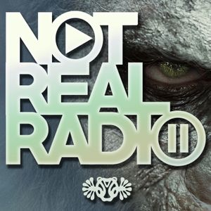 Not Real Radio Episode 76 ∙ the 3rd Degree
