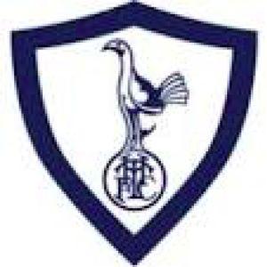 The Tottenham Hotspur Family Podcast - Bonus Episode: 100 Not Out