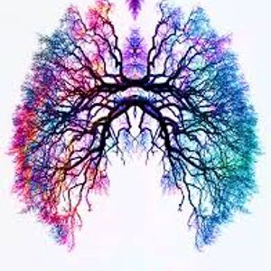 4 July 2017: Breathe