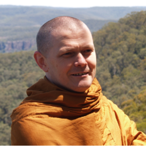 Reflections for a Happy New Year | Ajahn Sujato
