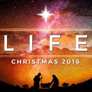Life (Audio)