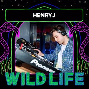 HenryJ: Wild Life 2017 Mix Competition