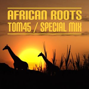 TOM45 African Roots 2016 Special Mix