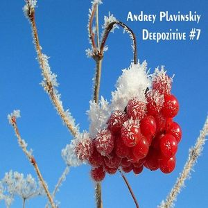 Andrey Plavinskiy - Deepozitive #7 (31.12.2014 live on radiocanyon.ru)