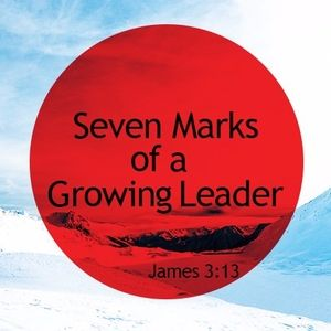 Seven Marks of a Growing Leader: Salvation
