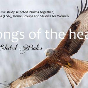 """How Good & pleasant it is!"" - Study 17 (Psalm 133)"