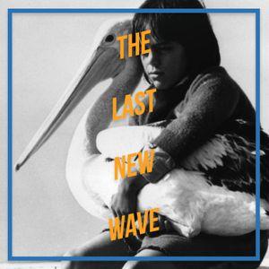 Storm Boy - 1976 - Henri Safran - The Last New Wave