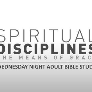 Spiritual Disciplines: Bible Intake (Part II)