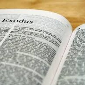 23rd July 2017 (Evening) – Rev. Gareth Edwards – Exodus 2
