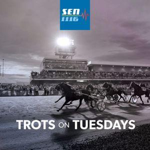 Trots On Tuesday (November 14)