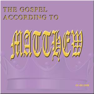 Matthew 8: 18-34