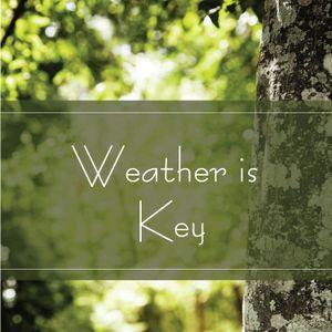 Weather Is Key