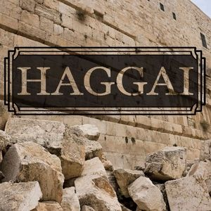 Haggai: Part 6 - Waiting for Blessing