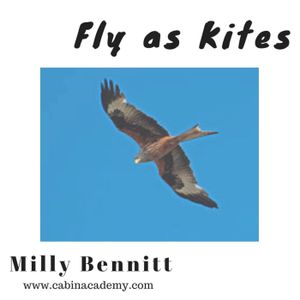 Fly as Kites
