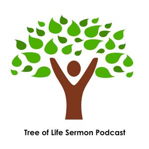 Sunday Sermon 6_24_17