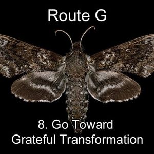 Pastor Harley Snode - 8. Go Toward Grateful Transformation