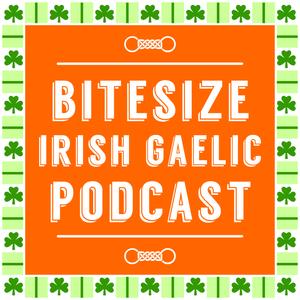 How To Add Irish Gaelic To Your Lifestyle? (Ep. 59) [Re-run]