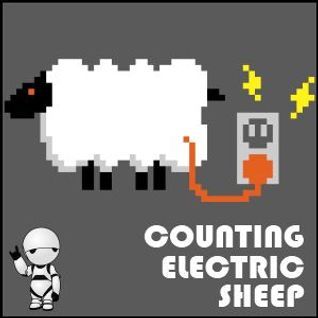 Paranoid Androidz - Counting Electric Sheep