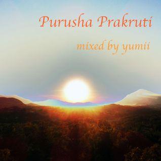 Purusha Prakruti