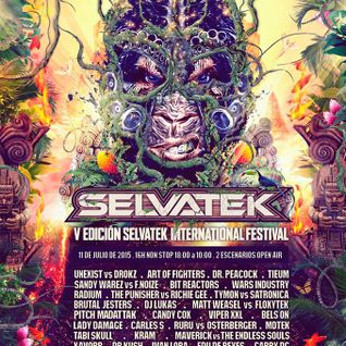 Lukas At Selvatek Festival 11 07 2015