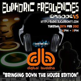 euPHoRiC FReQueNCieS ep15 Bringing down the House - digit@l buddha