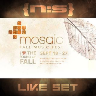 Mosaic Fall Music Festival 2014 (Live Set)