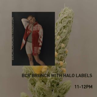 BCR Brunch with Halo Labels