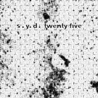 DJ S.Y.D « Twenty five » - Bruits de Fond 03 (2001)