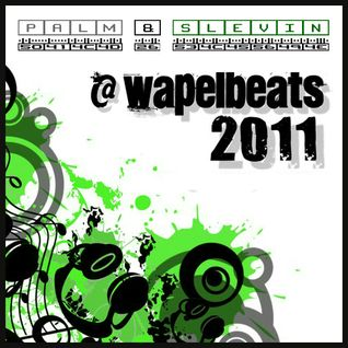 Palm & Slevin @ Wapelbeats 2011 - Closing