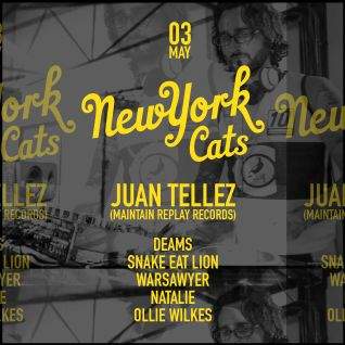 Juan Tellez - New York Cats - 3 May 2015