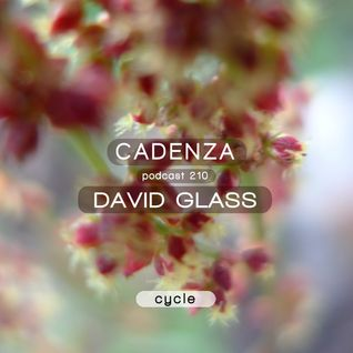 Cadenza Podcast | 210 - David Glass (Cycle)