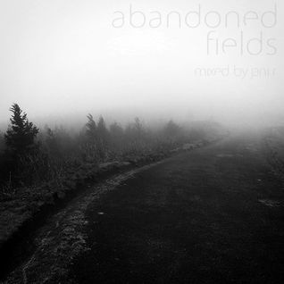Abandoned Fields