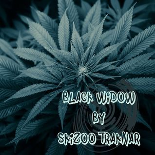SkiZoO_TraKnaR - Black Widow (RaggaJungle-RaggateK) - 2014
