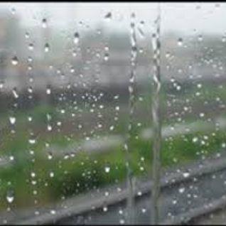 FZL-It's a Rainy Mix