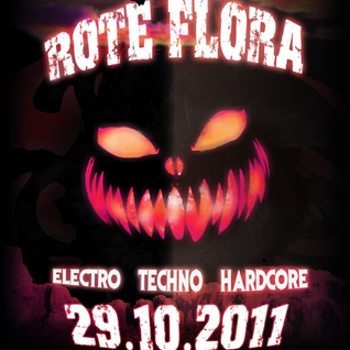 Ma-Cell & Herr Schulz at Rote Flora, Hamburg - 29.10.2011