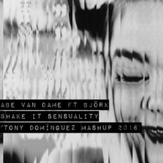 Abe Van Dame Ft Björk - Shake It Sensuality (Tony Dominguez Mashup 2016)