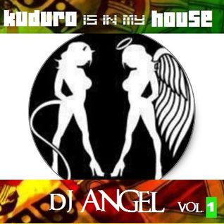 KUDURO is in my HOUSE vol.1 by DJ ANGEL