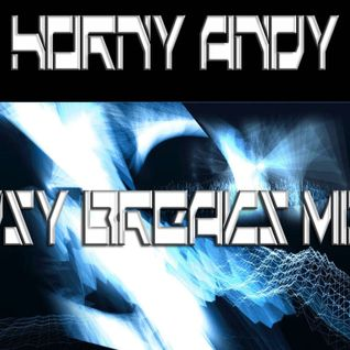 Horny Andy - Psy Breaks Mix
