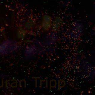 Auran Tripp - Progressive Electronic Mix