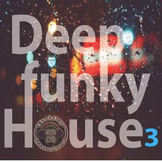 Deep Funky House 3